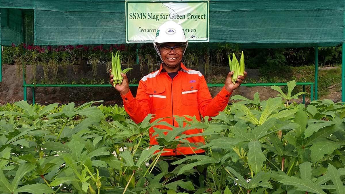 Employee Picking Farm Produce