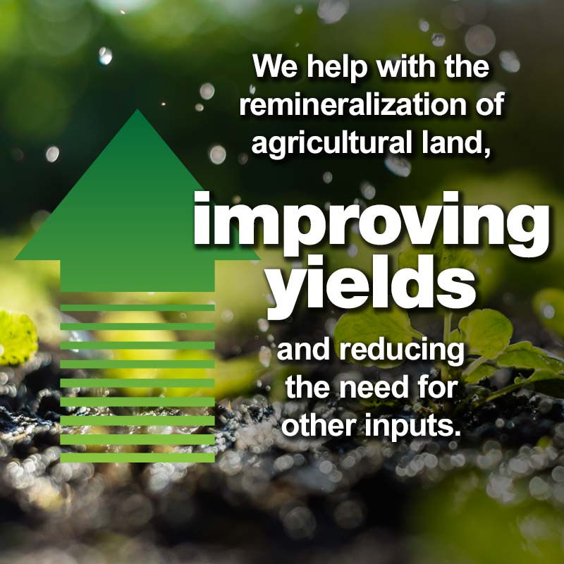 Levy, Improving Yields