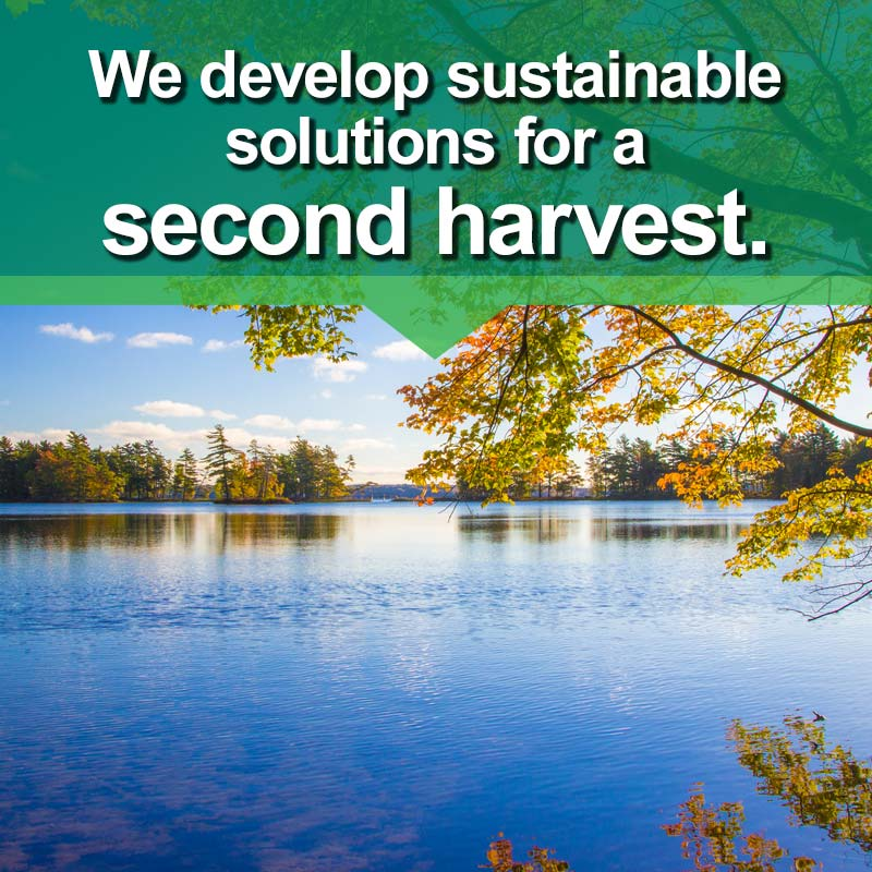 Levy, Sustainable Solutions for a Second Harvest